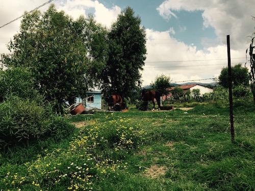 Localidades de San Ildefonso Tultepec - 5 copia
